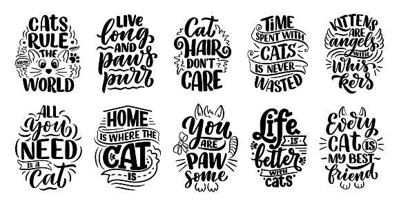 Set with funny lettering quotes about cats for print in hand drawn style. Creative typography slogans design for posters. Cartoon vector illustration.
