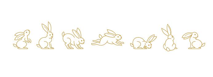 Set with line art rabbit. Icons, symbols, logo design elements, illustration of cute bunny.
