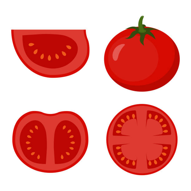 set with tomato set of red ripe tomatoes isolated on background, group of whole, slice, half of a tomato fruit tomato stock illustrations