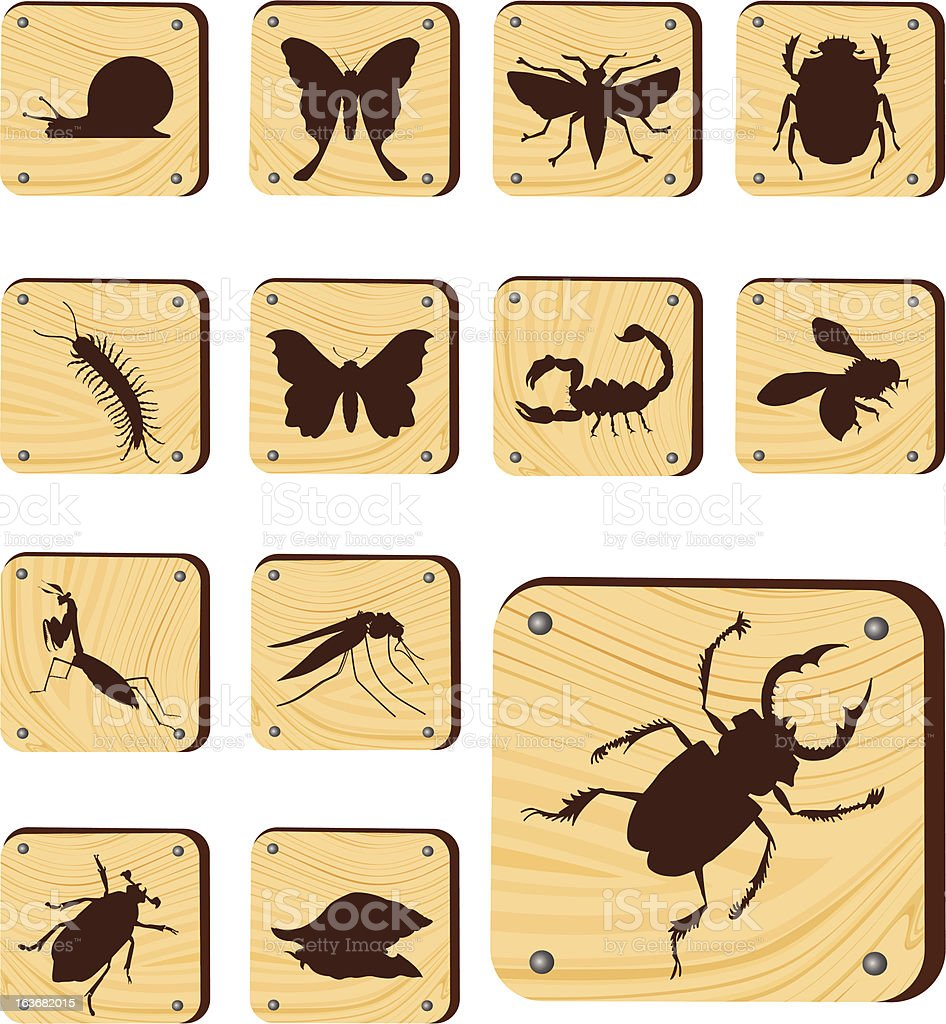 Set wooden buttons: Insects vector art illustration
