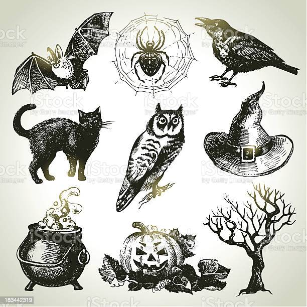 Sets of drawings one would associate with halloween vector id183442319?b=1&k=6&m=183442319&s=612x612&h=57lvro ozri sjwkeznolfioxq03xsqisecauytr pk=