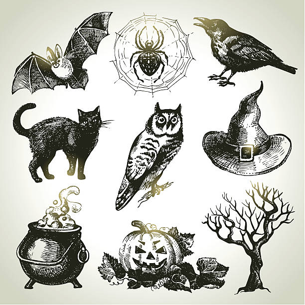 Sets of drawings one would associate with Halloween Hand drawn Halloween set  halloween cat stock illustrations