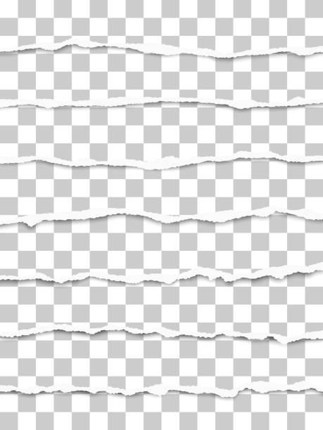 sieben längs zerrissene transparente papierfragmente platzierten sich mit weichem schatten untereinander. vektor-papier-vorlage. - zerrissen stock-grafiken, -clipart, -cartoons und -symbole