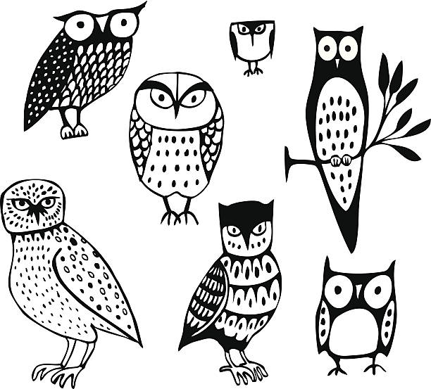 seven owls - black and white owl stock illustrations, clip art, cartoons, & icons