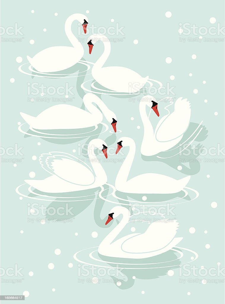 Seven Swans A-Swimming royalty-free seven swans aswimming stock vector art & more images of animal