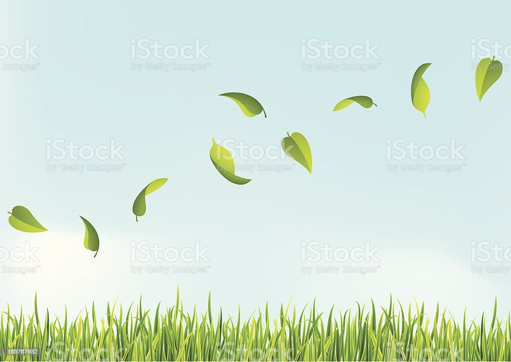 Several leaves flying above the grass vector art illustration