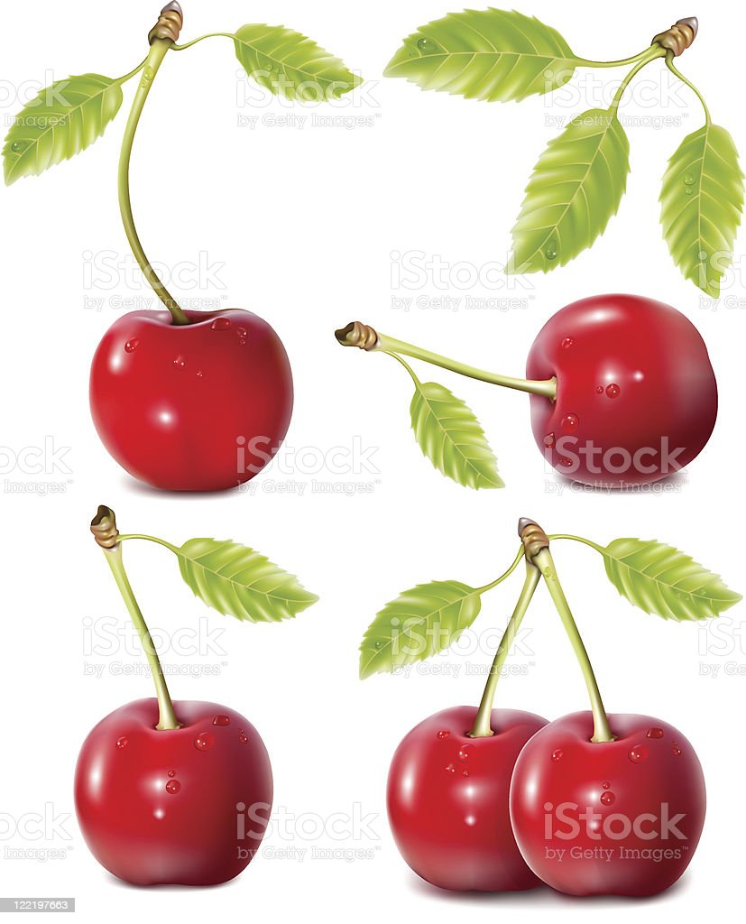 Several red cherries with stems and leaves grouped together royalty-free several red cherries with stems and leaves grouped together stock vector art & more images of berry fruit