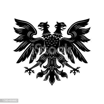 istock Severe double eagle vector illustration 1285465682