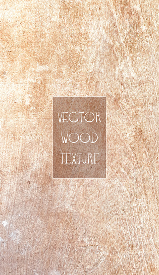 Shabby Wooden Brown Background. Grunge Texture, Painted Surface. Coastal Background.