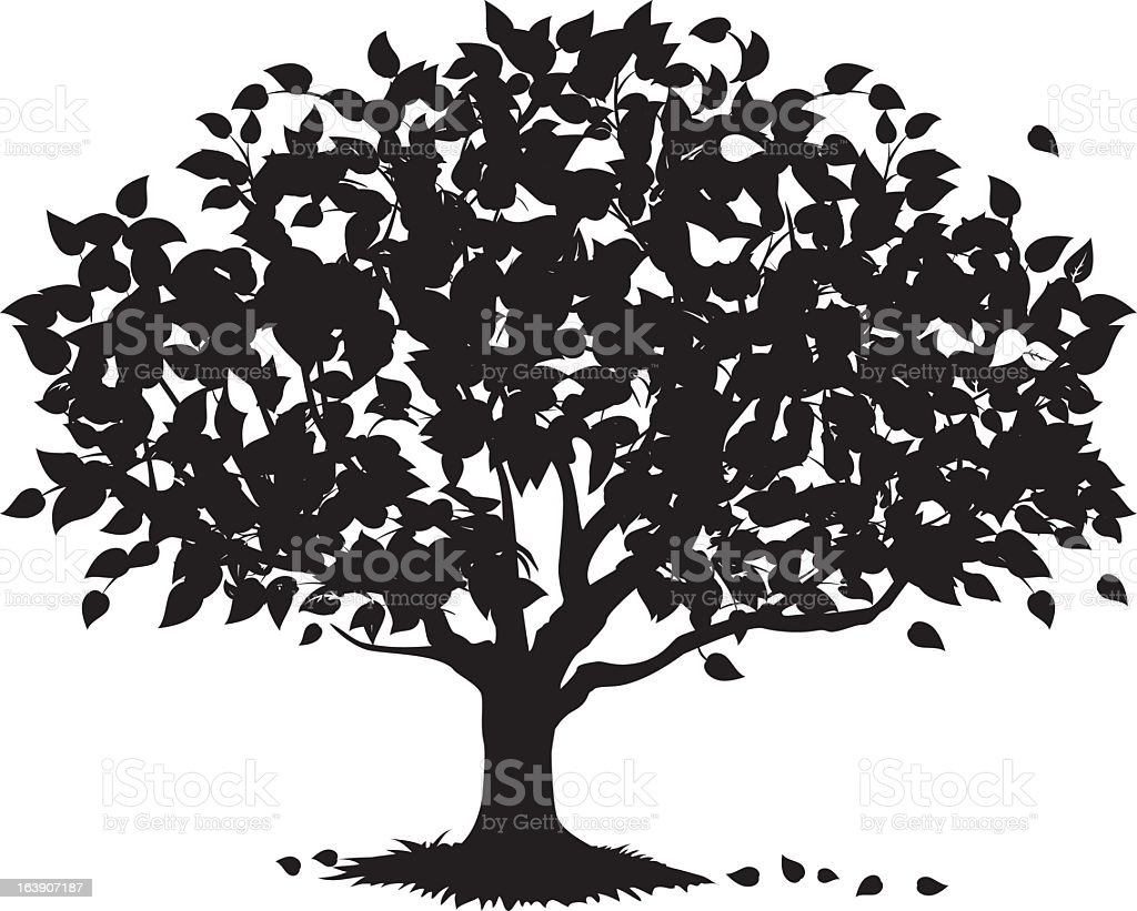 Shade Tree Silhouette Stock Vector Art & More Images of ...