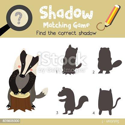 Shadow matching game Badger animal cartoon character vector illustration