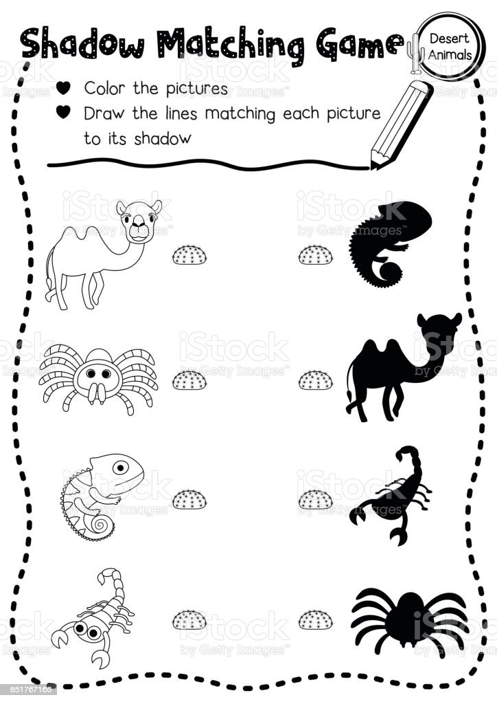 Shadow Matching Game Desert Animal Coloring Page Version Royalty Free