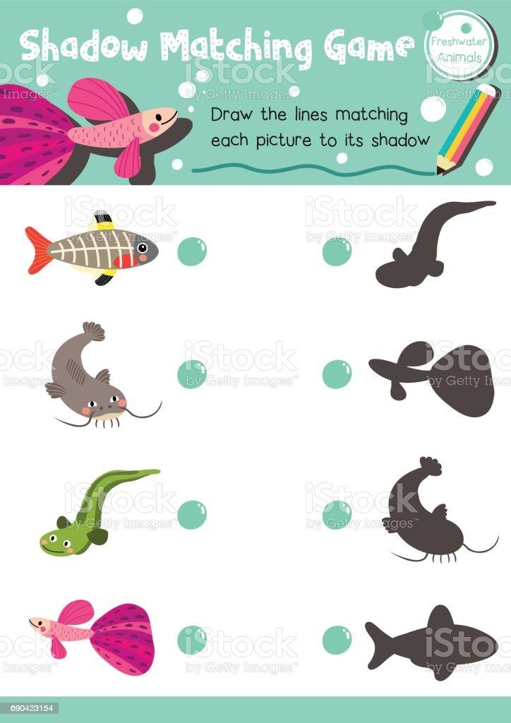 Shadow matching game freshwater animal vector art illustration