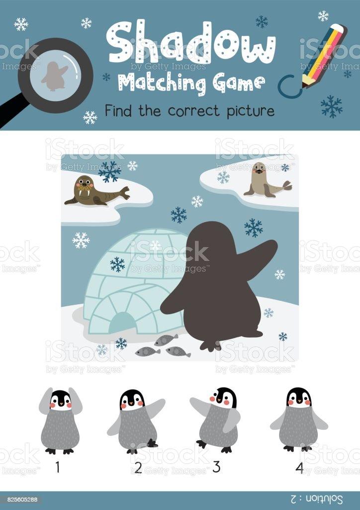 Shadow Matching Game Funny Penguin And Igloo Animal Cartoon