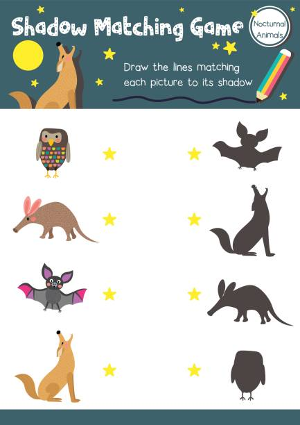 passende spiel nachtaktives tier schatten - ameisenbär stock-grafiken, -clipart, -cartoons und -symbole