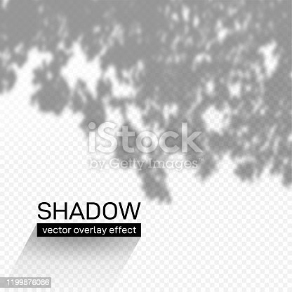 istock Shadow overlay effect. Soft light and grey shadows from plant branches and foliage. Mockup of shadow overlay effect and natural lightning. Vector illustration. Isolated on transparent background. 1199876086