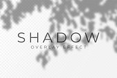 istock Shadow overlay effect. Transparent soft light and shadows from plant branches, leaves and foliage. Mockup of transparent shadow overlay effect and natural lightning 1174224107