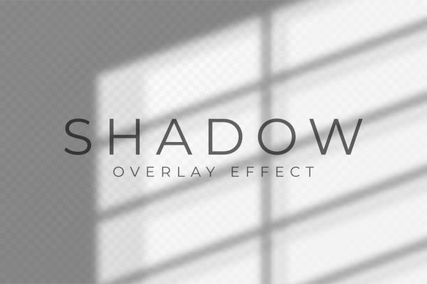 Shadow overlay effect. Transparent soft light and shadows from windows and jalouse. Mockup of transparent shadow overlay effect and natural lightning vector art illustration