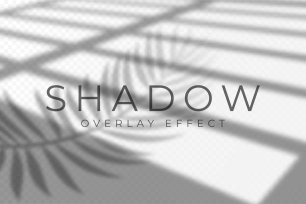 shadow overlay effect. vector shadow and light overlay effect, natural lighting scene. mockup of transparent shadow from windows and palm leaves - жалюзийный тип stock illustrations