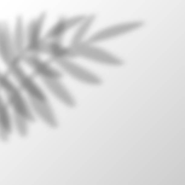 bildbanksillustrationer, clip art samt tecknat material och ikoner med skugga overlay effekter transparent vektor - skuggig