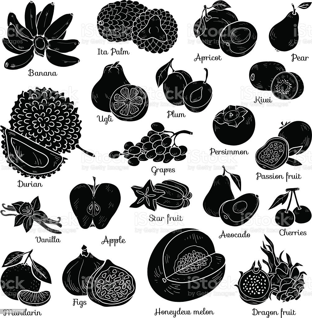Shadow set with tropical fruits, vector cartoon collection vector art illustration