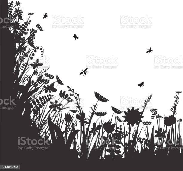 Shadows flowers summer round vector black and white vector id915349592?b=1&k=6&m=915349592&s=612x612&h=y64 8bgouzsofzvzuwmzd wy0dqnw goahefdcn4kgs=