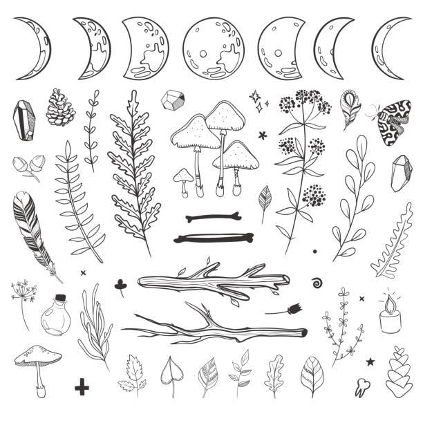 bildbanksillustrationer, clip art samt tecknat material och ikoner med shamanistiskt blommig set - wood stone