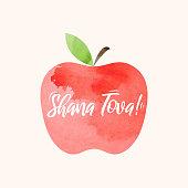 Shana Tova lettering on watercolor apple. Rosh Hashanah greeting card. Jewish New Year holiday. Vector illustration. EPS10