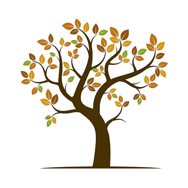shape of autumn tree. vector illustration. - winterruhe stock-grafiken, -clipart, -cartoons und -symbole
