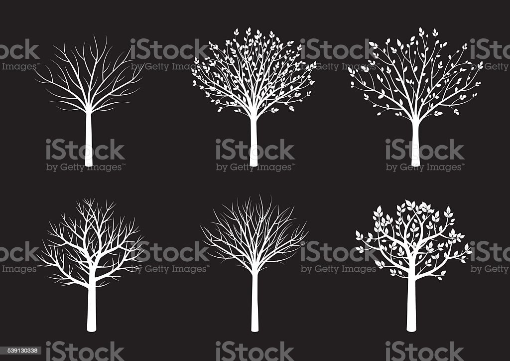 Shape of White Trees. Vector Illustration. vector art illustration