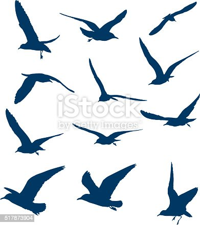 Shapes of flying seagulls isolated on white