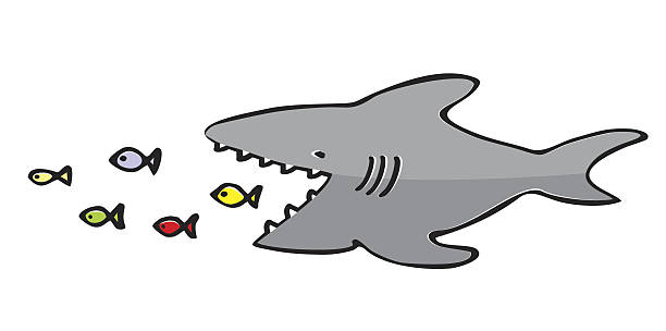 royalty free shark eating clip art vector images
