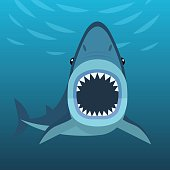 Shark attacks under the water