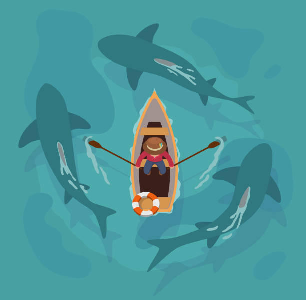 Shark Boat An aerial view of a man in a boat rowing in between 3 circling sharks. great white shark stock illustrations
