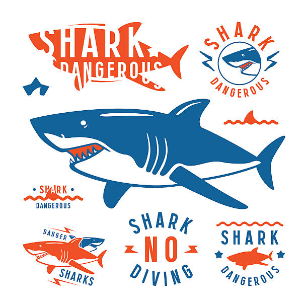 Shark dangerous emblems Shark dangerous emblems, labels and design elements. Color print on white background animal fin stock illustrations
