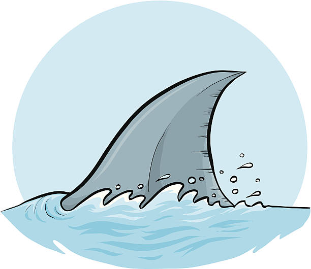 Shark Dorsal Fin Shark in a speedy chase. animal fin stock illustrations