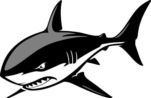 Shark Fierce Isolated Illustration