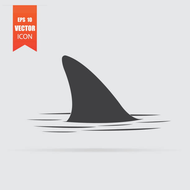 Shark fin icon in flat style isolated on grey background. Shark fin icon in flat style isolated on grey background. For your design, logo. Vector illustration. animal fin stock illustrations