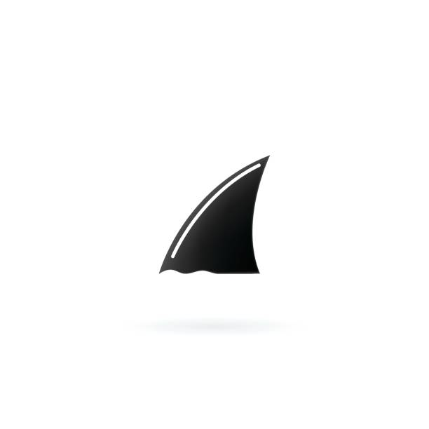 Shark fin icon isolated on white background. Shark fin icon isolated on white background. animal fin stock illustrations