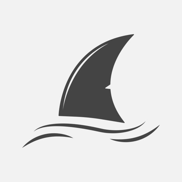 Shark fin vector icon. Fin in the water.Layers grouped for easy editing illustration. For your design. Shark fin vector icon. Fin in the water. Layers grouped for easy editing illustration. For your design. animal fin stock illustrations