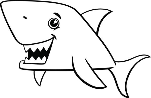 Best Dorsal Fin Illustrations, Royalty-Free Vector