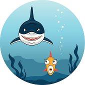 istock Shark hunting for small fish 467087239