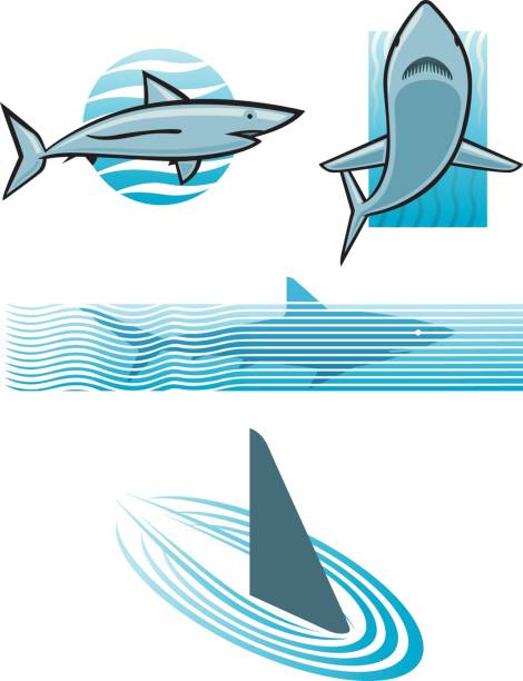 Shark icon set vector art illustration