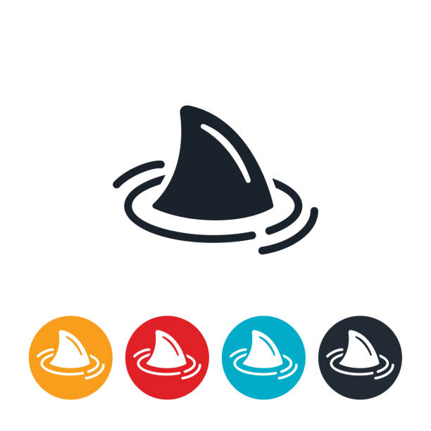 Shark Icon An icon of a sharks fin poking out of the water. animal fin stock illustrations