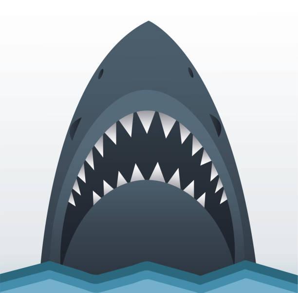 Shark icon vector illustration Shark icon vector illustration human jaw bone stock illustrations
