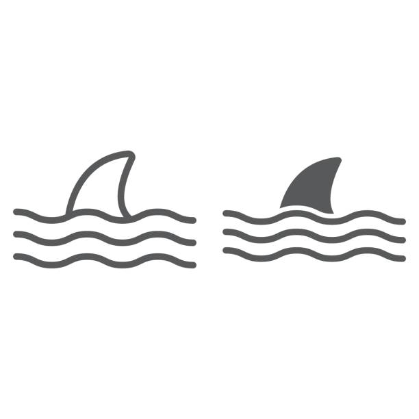 Shark line and glyph icon, animal and underwater, aquatic sign vector graphics, a linear pattern on a white background, eps 10. Shark line and glyph icon, animal and underwater, aquatic sign vector graphics, a linear pattern on a white background, eps 10. animal fin stock illustrations