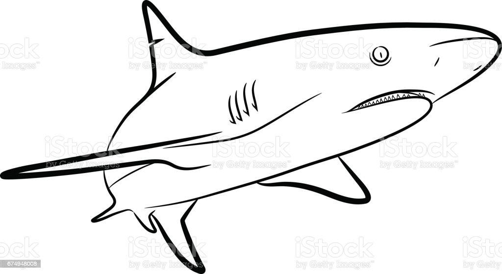 Shark Line Art vector art illustration