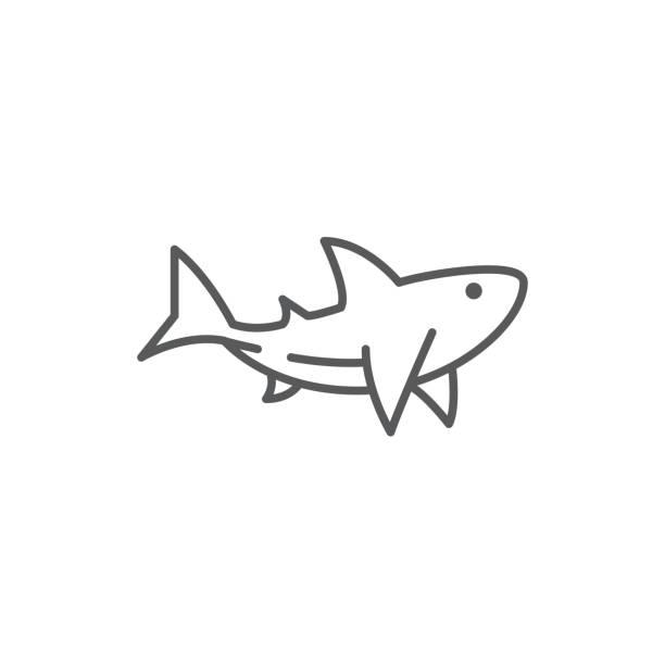 Shark line editable pixel perfect icon isolated on white background. Shark line editable pixel perfect icon isolated on white background. Outline sea and ocean wildlife swimming predator animal simple silhouette, vector illustration. great white shark stock illustrations