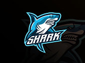 istock Shark mascot sport logo design 1250680784