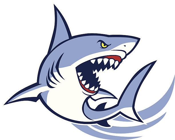 shark mascot vector of shark mascot, suitable for any kind of mascot great white shark stock illustrations